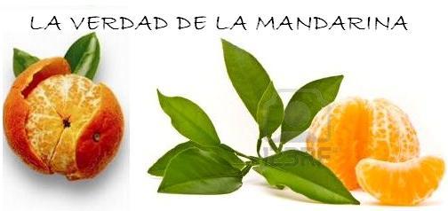LA VERDAD DE LA MANDARINA