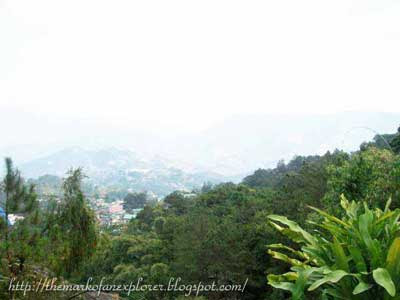 mines view baguio city