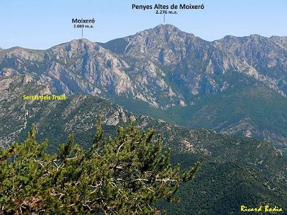 Zoom al Moixeró des de la Roca Tiraval. Autor: Ricard Badia