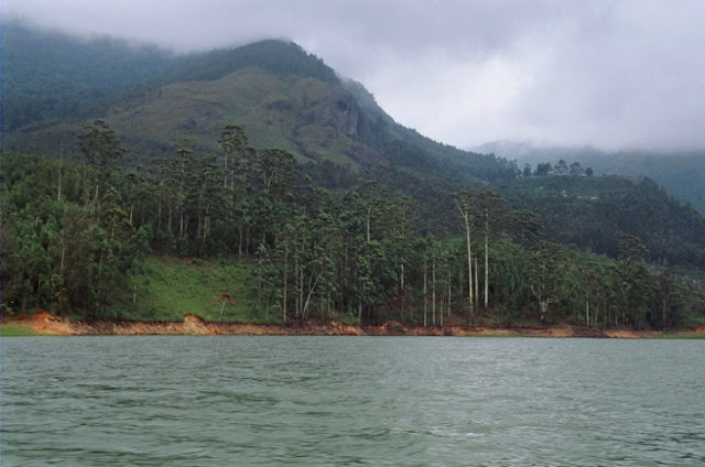 view of munnar lake