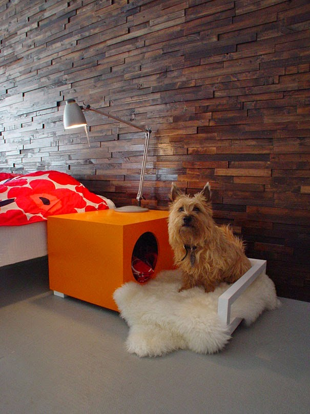 innovative furniture ideas for animals2