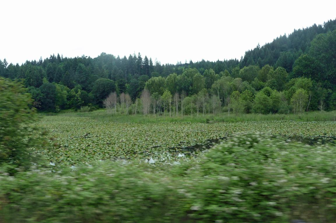 The Lewis And Clark Trail Day 41 Travel Day Portland