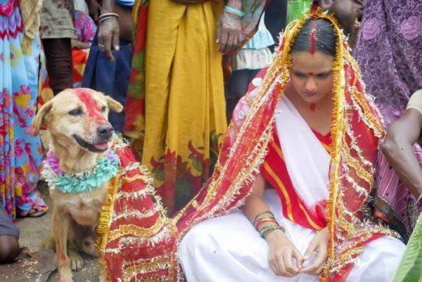 Menikah dengan Hewan