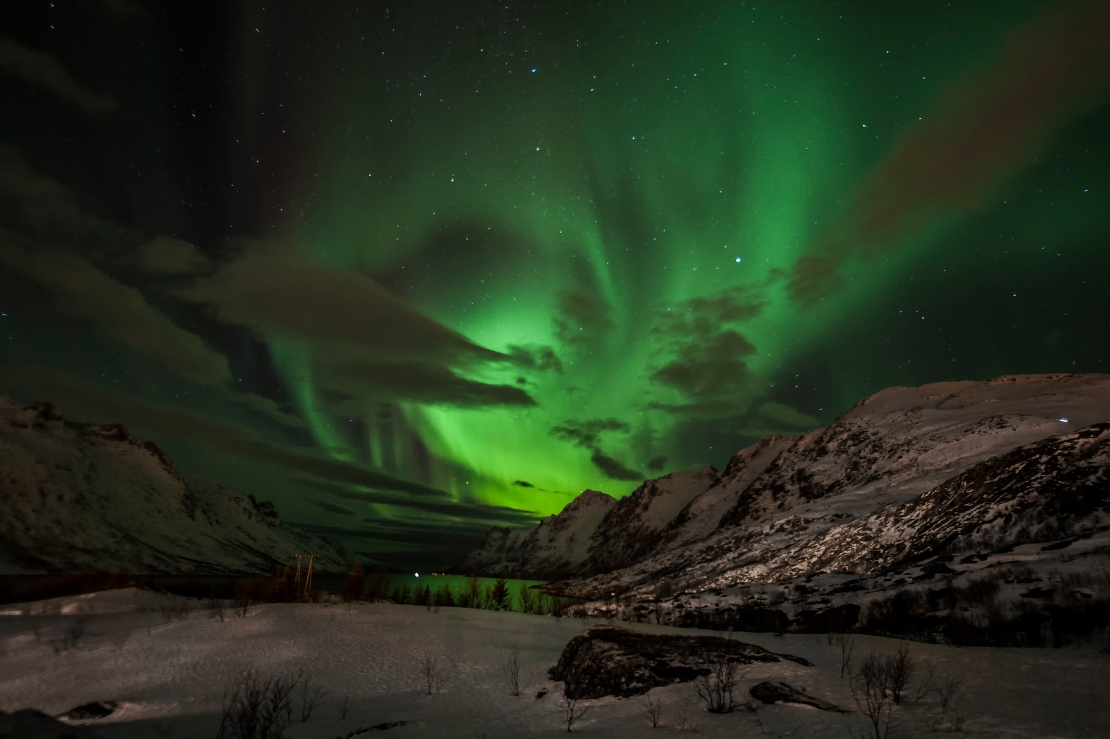 The dazzling display of the Northern Lights over Tromsø, Norway. Photo: Mark Robinson.