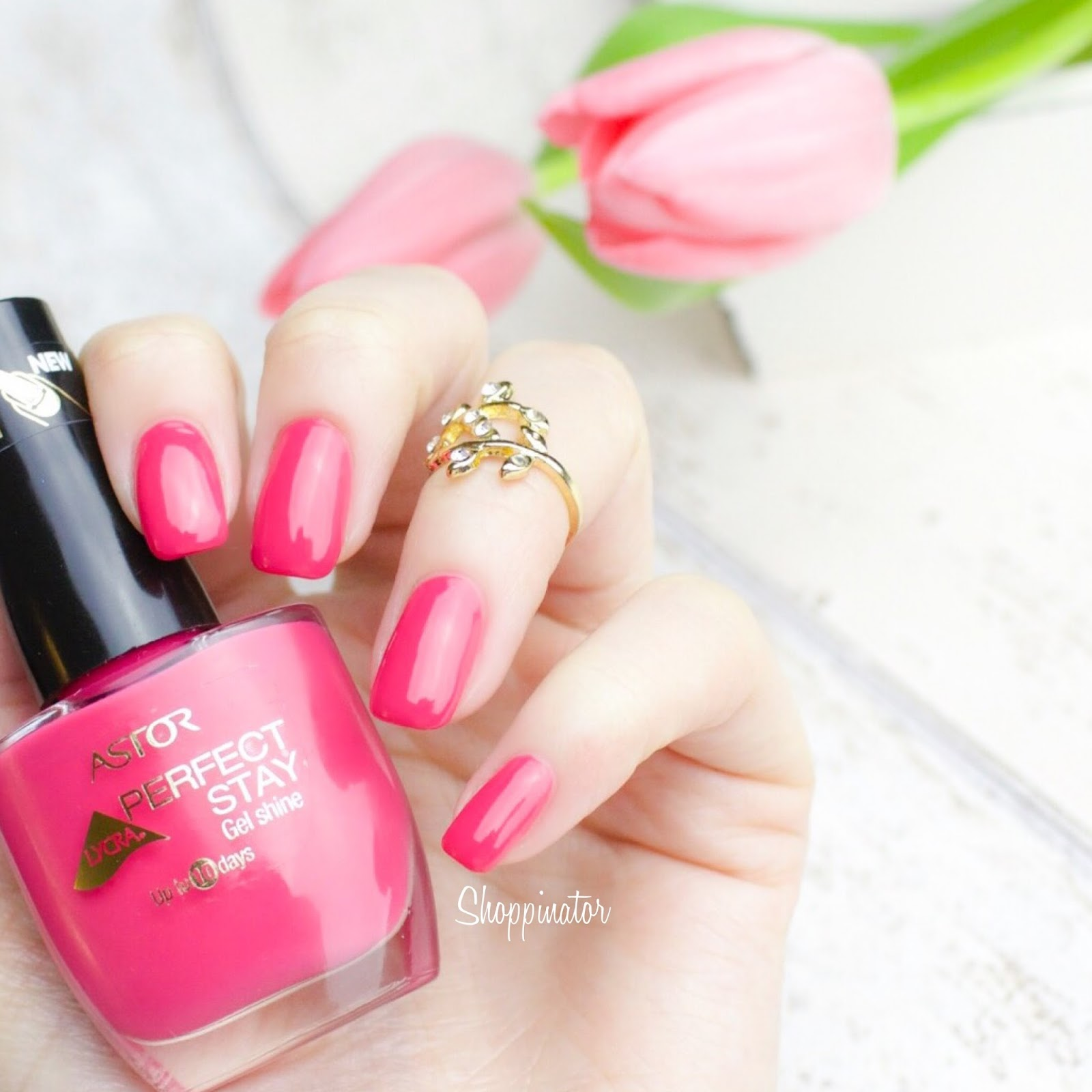 Shoppinator-Astor-Pink-with-envy-Pink-Perfect-Stay-Gel-Shine-Nagellack-Notd-Nails-Frühlingslack-Frühling-Drogerie-Miss-Sophies-Flamingo-Nail-Sticker-Nailsticker-Flamingos-Nailwraps