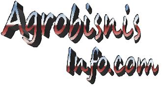 Blog Peternakan, Artikel Populer Blog