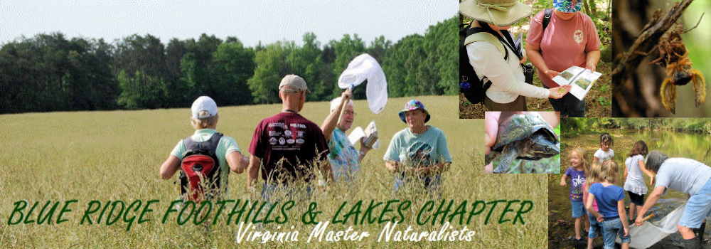 Blue Ridge Foothills &amp; Lakes Virginia Master Naturalists