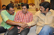 Lion movie success meet photos gallery-thumbnail-14