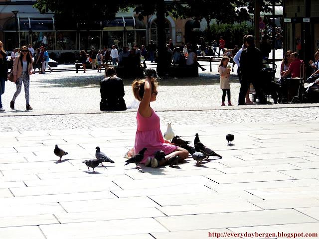 Pigeons whisperer
