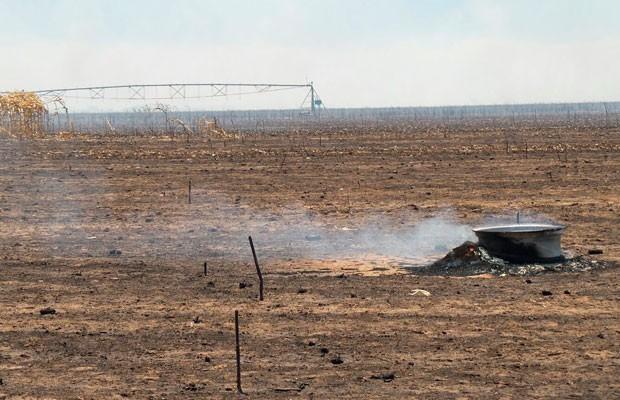 Incêndio devasta plantação no oeste da Bahia (Foto: Ivan Rodrigo/Blog do Braga)