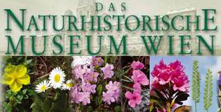 Das Naturhistorische Museum Wien
