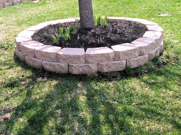 landscaping bricks tree