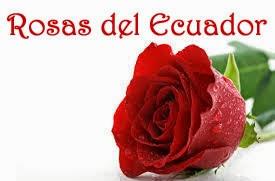 Rosas del Ecuador