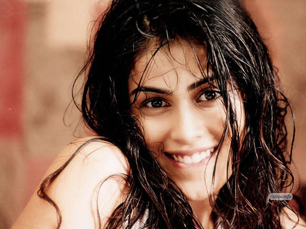 genelia d souzaGenelia Hairstyle In Force