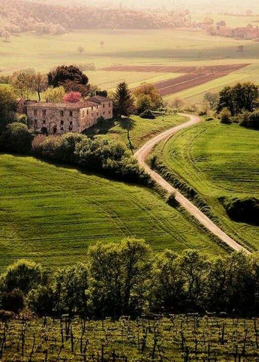 Villa in Tuscany, Italy photo