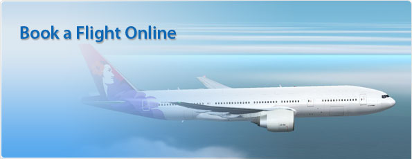 airline tickets south africa domestic