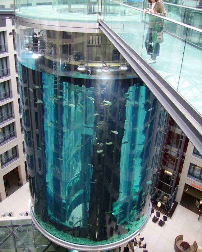 World's Largest Cylindrical Aquarium