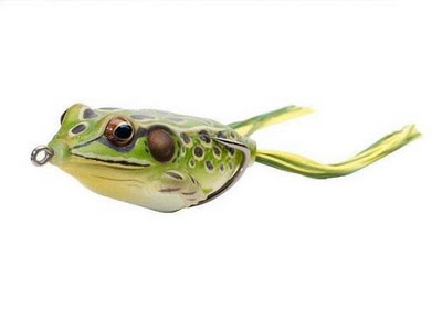 Live Target Hollow Body Frog
