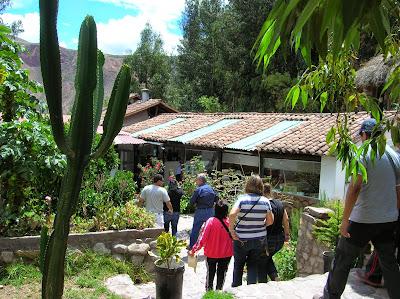 Vegetación Valle Sagrado de los Incas,  Perú, La vuelta al mundo de Asun y Ricardo, round the world, mundoporlibre.com