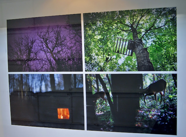 Deep Woods: Visual Arts Winter/Spring 2015 Exhibition at Harbourfront Centre in Toronto, culture, art, artmatters, visual, installation, ontario, canada, tourist, attraction, explore, visit, The Purple Scarf, Melanie.Ps, nature