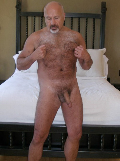 Silverdaddies Hairy Older Men