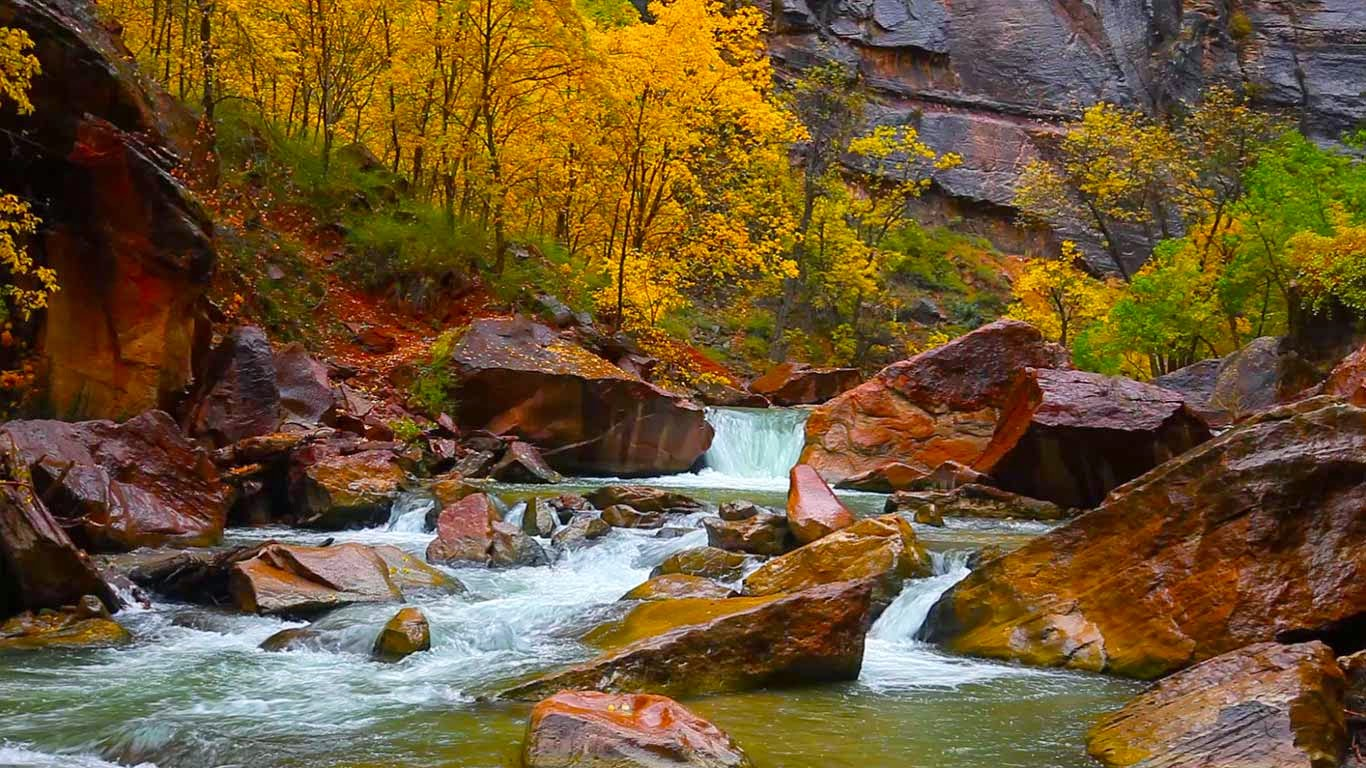 North Fork of the Virgin River, Zion Canyon, Utah (© Shutterstock) 24