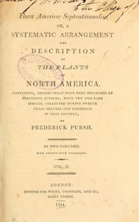 """Flora Americae septentrinonalis"" (1813)"