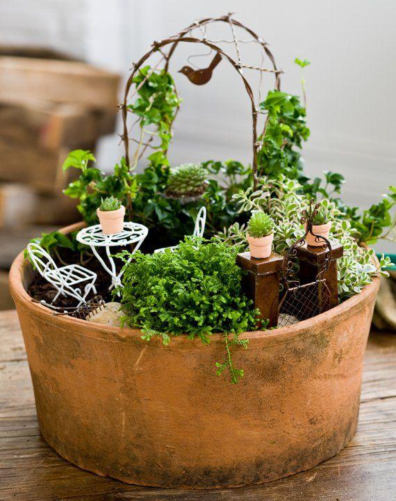 Как сделать мини сад в горшке своими руками мастер класс
