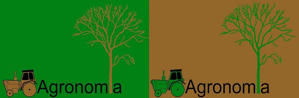 Ingeniería agronómica en la UPEA