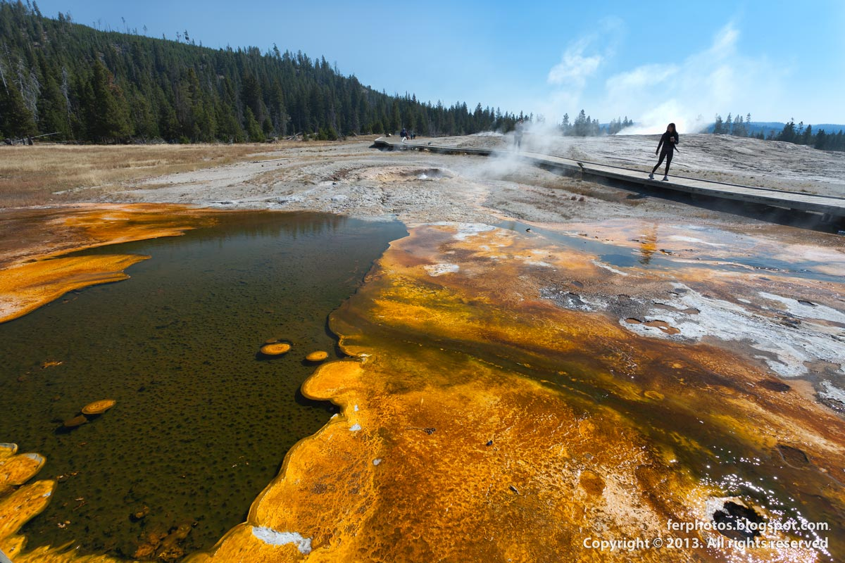 Yellowstone National Park orange bacteria hot springs geyser water Old Faithfull Norris Lower Basin