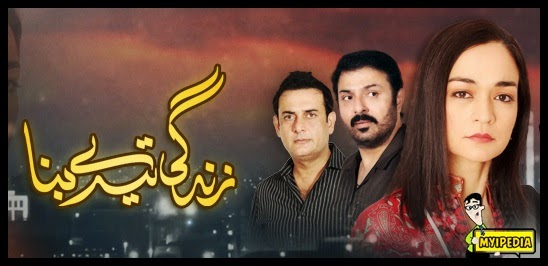 zindagi tere bina on hum tv