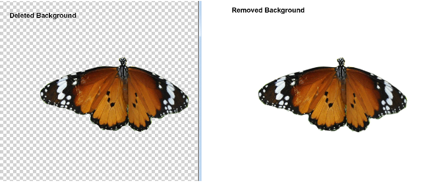 How to Delete & Remove Background in Adobe Photoshop 7.0 - Own Abbas