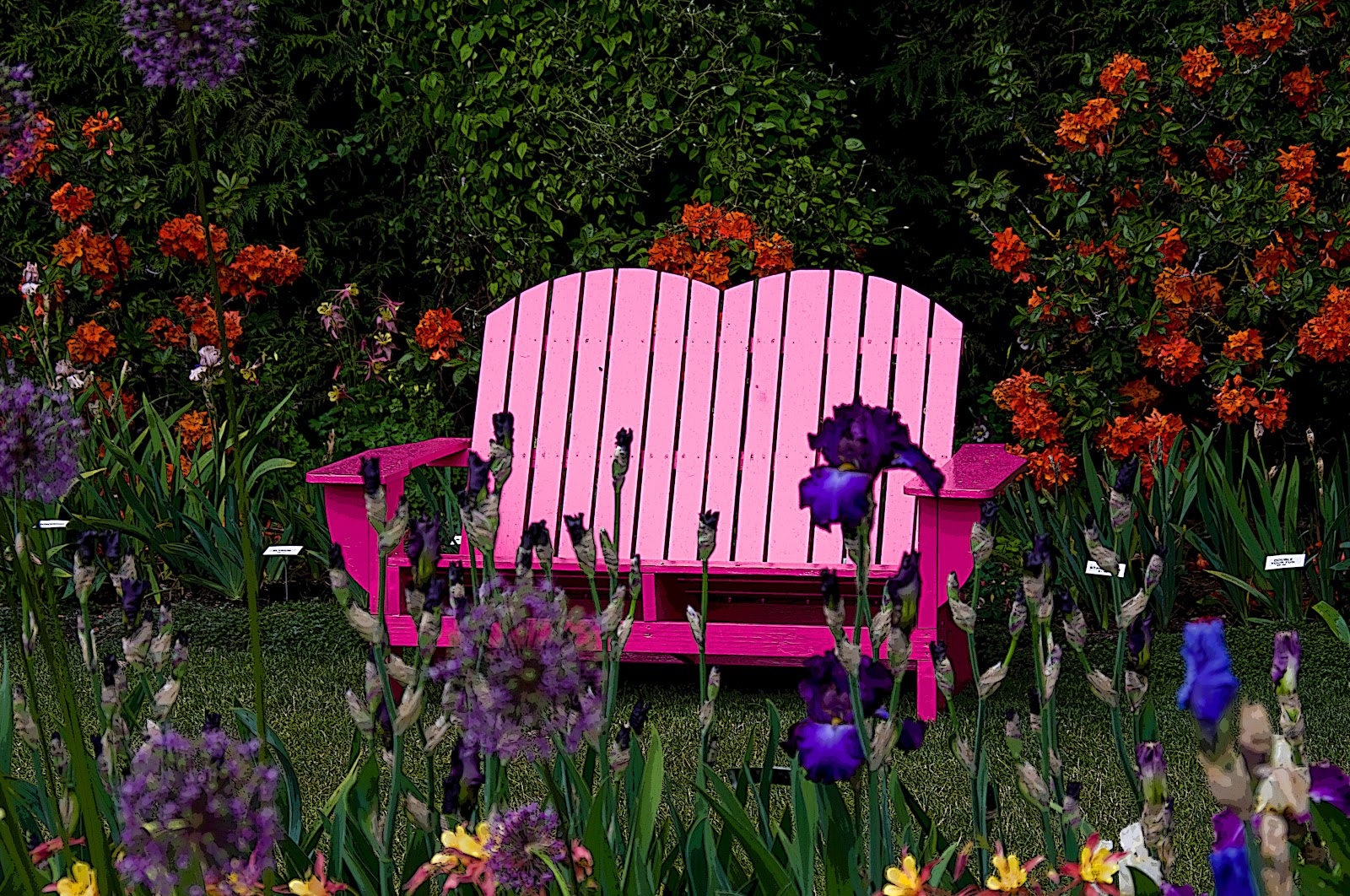 Thom Zehrfeld Photography Schreiner 39 S Iris Gardens Four