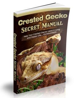 Crested Gecko Secret Manual