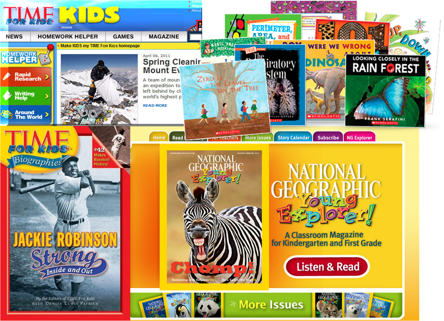 adventures in literacy land informational text the 3 2 1 strategy can be used informational books magazine articles biographies even websites here are a few of our favorite books and websites we