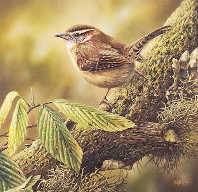 pinturas-de-aves-al-oleo