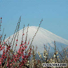 gunung api Fuji Jepang