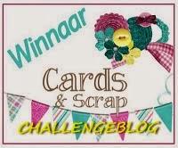 1e prijs bij Cards en scrap