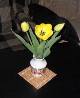 09.05. Первые тюльпаны