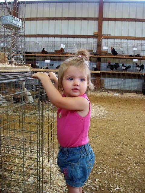 she loves birds