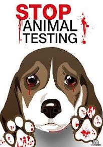 Não à utilização de animais em testes