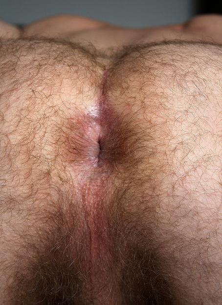Free Bear Gay Porn Videos Sex Movies With Bears  Pornhub