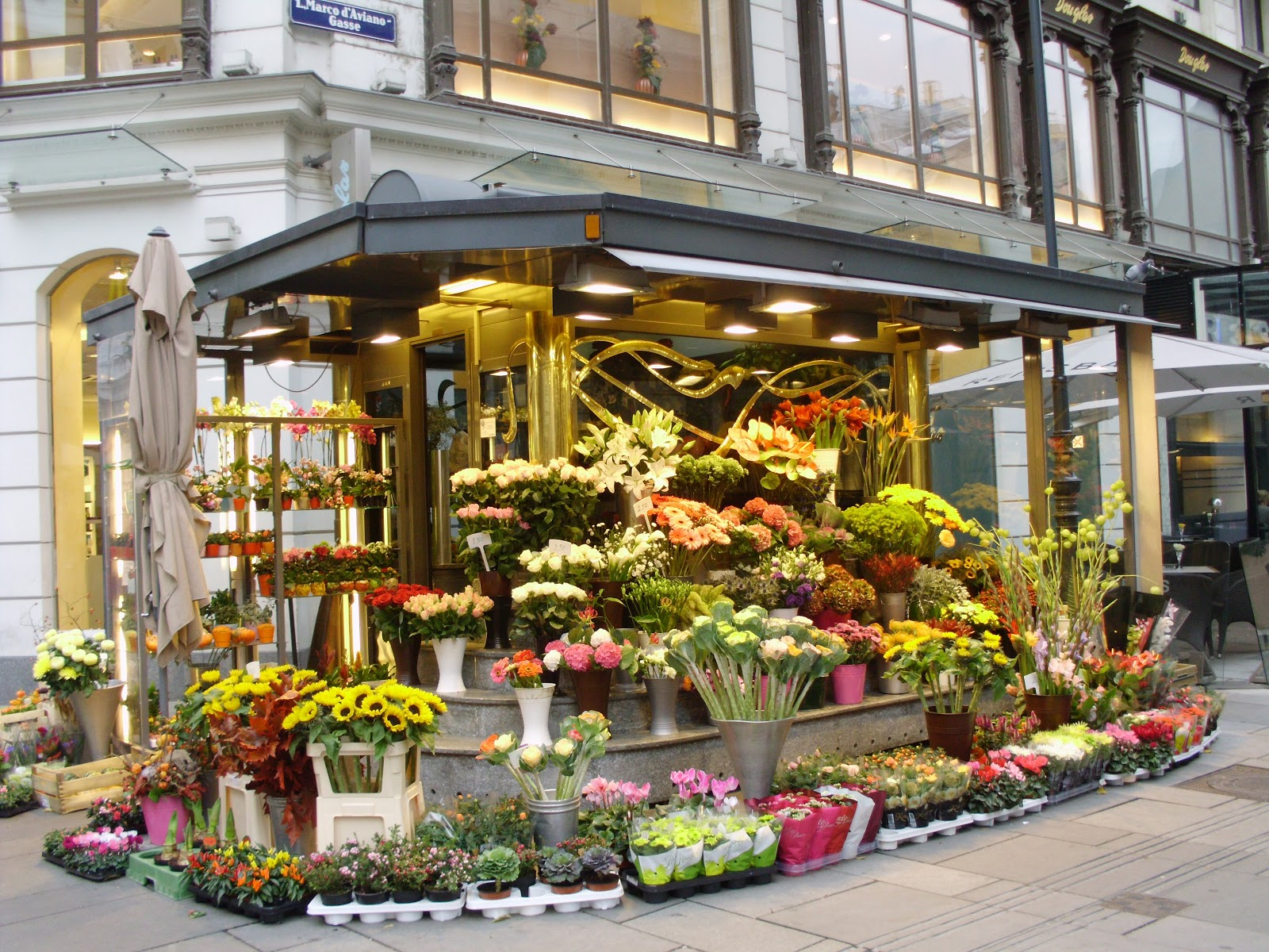 feasibility of flower shop Bplan experts / florist shop- sample business plan our services business planning feasibility study startup funding business ideation investor presentation.