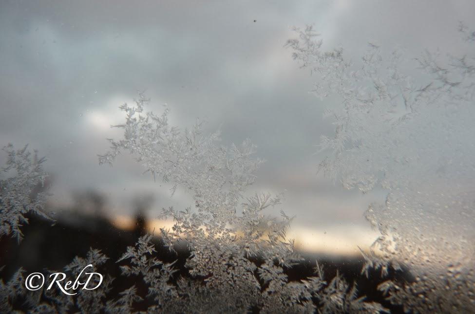 rimfrost på fönsterruta foto: Reb Dutius