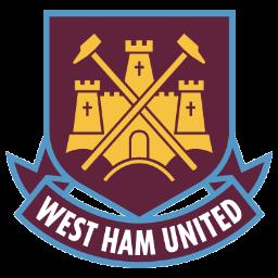 أهداف مباراة وست هام وإيفرتون 1-1 الدوري الإنجليزي [7-11-2015] HD