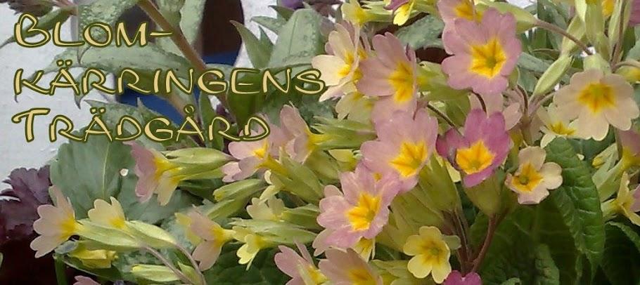 Blomkärringens Trädgård