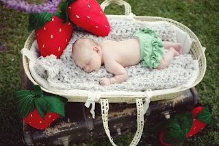 strawberry felt pillow