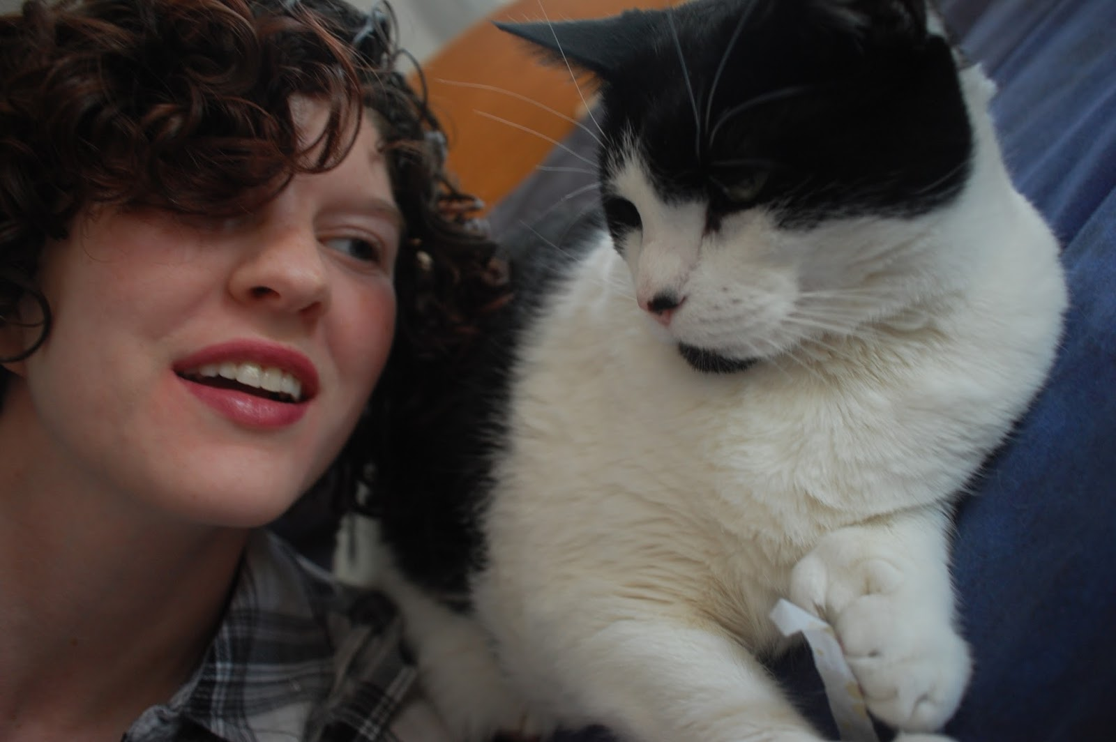 short curly hair and cat