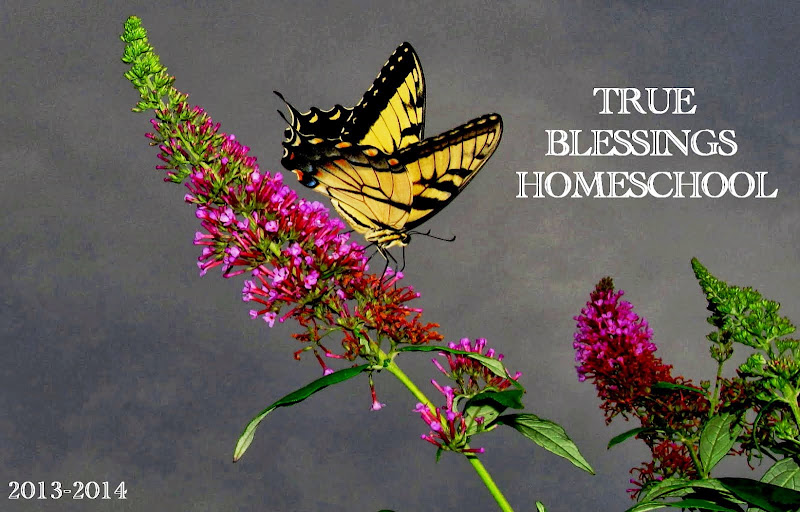 TRUE BLESSINGS HOMESCHOOL