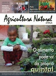 Revista Agricultura Natural - Edição 02